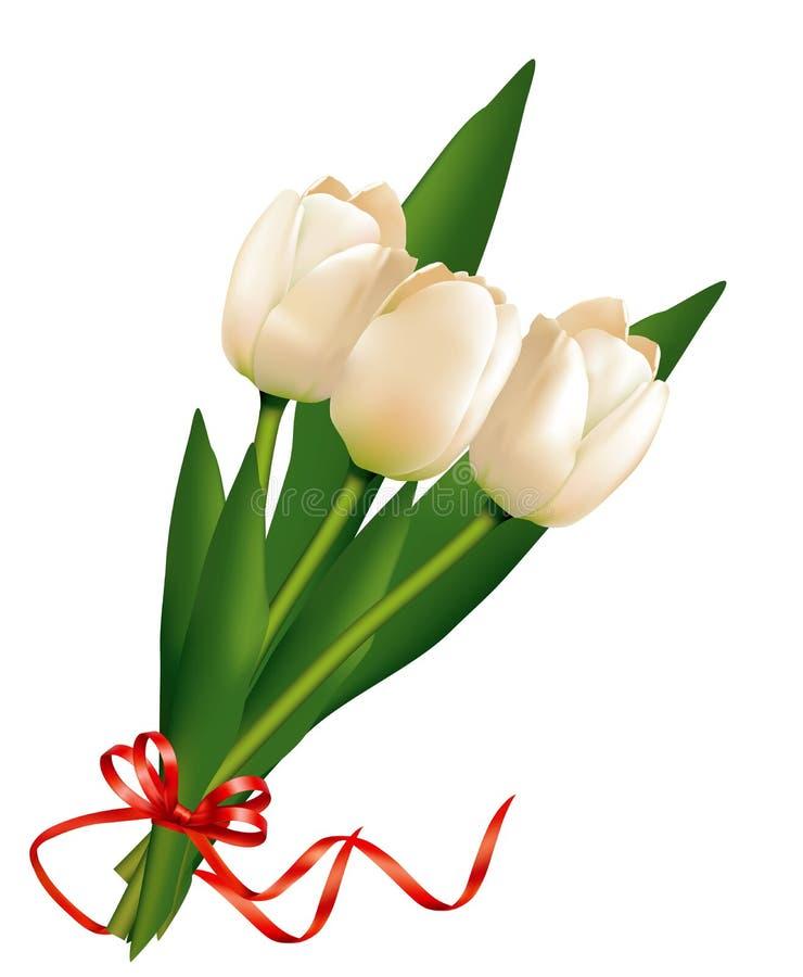 Bukiet biali tulipany ilustracja wektor