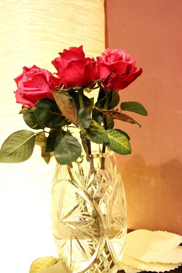 Bukiet czerwone róże w krystalicznej wazie w wieczór na stołu, brązu i beżu brzmieniach, obrazy stock
