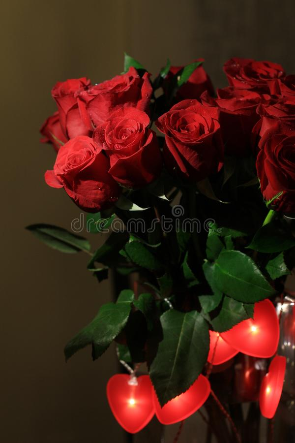 Bukiet czerwone róże z czerwienią słuchającą dla walentynka dnia obrazy royalty free