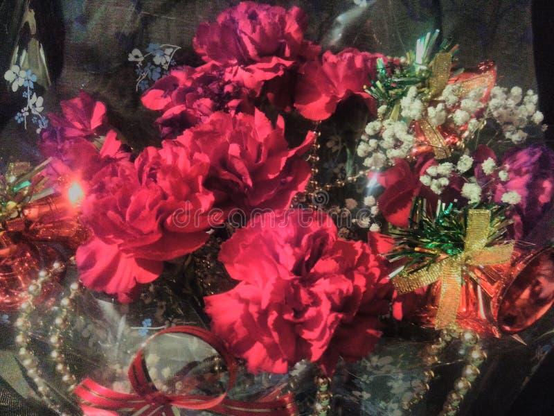 Bukiet czerwony goździka prezent dla nowego roku lub bożych narodzeń zdjęcie stock