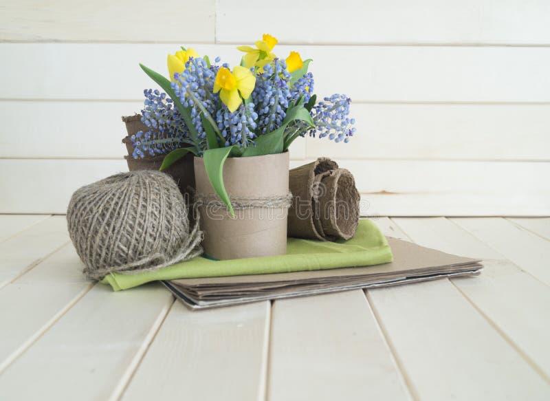 Bukiet daffodils, tulipany i Muscari, Wielkanoc obraz stock