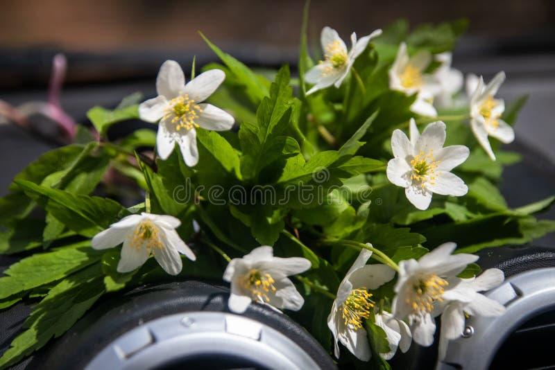 Bukiet dzicy biali kwiaty na nieociosanym drewnianym stole zdjęcie royalty free