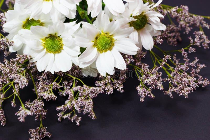 Bukiet dzicy kwiaty biały limonium na ciemnym tle i chamomile obraz stock