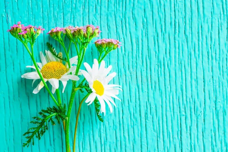 Bukiet dzicy kwiaty chamomile i krwawnik na drewnianym zielonym rocznika tle fotografia royalty free