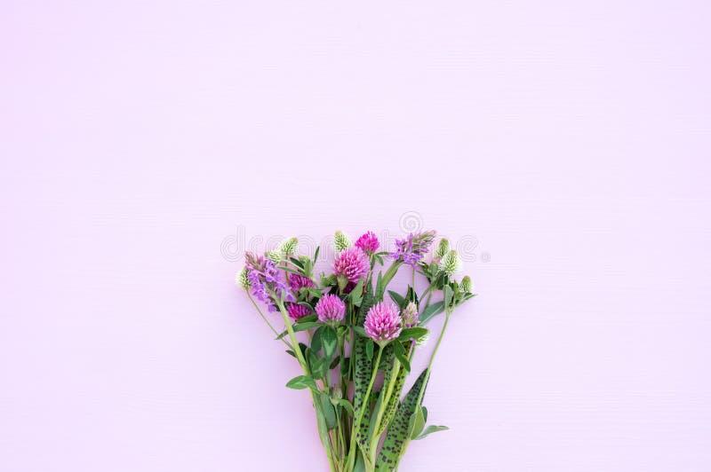Bukiet dzicy kwiaty na świetle - różowy tło w górę Delikatna romantyczna tła, menchii i białej koniczyna, fotografia royalty free