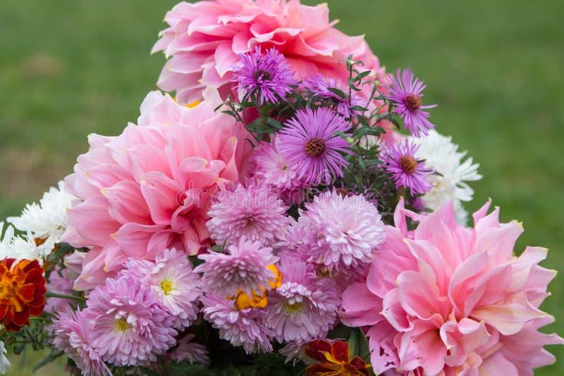 Bukiet jesień kwitnie, jesień bukiet piękni kwiaty na trawy tle fotografia royalty free