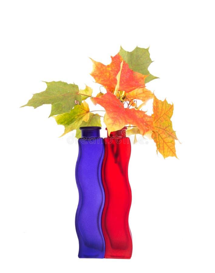 Bukiet jesień liście w jaskrawej barwionej wazie zdjęcie stock
