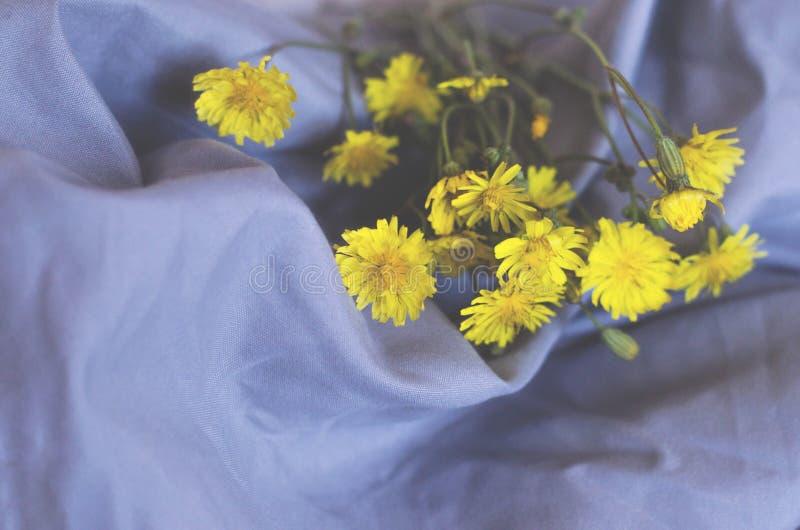 Bukiet kolor żółty kwitnie na szarym tkaniny tle fotografia stock
