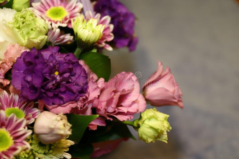 Bukiet kolorowi kwiaty na szarym tle zdjęcia stock