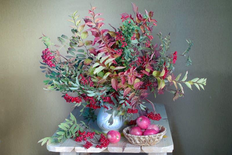 Bukiet kolorowi liście i czerwone jagody w jesieni Jesieni życie z pięknym jesieni lea fotografia stock