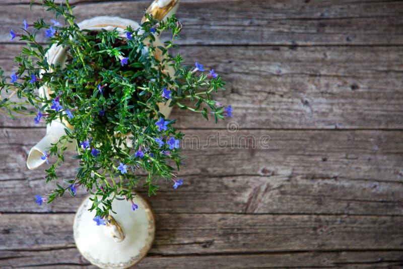 Bukiet kwiaty w Herbacianym garnku na Drewnianych deskach fotografia stock
