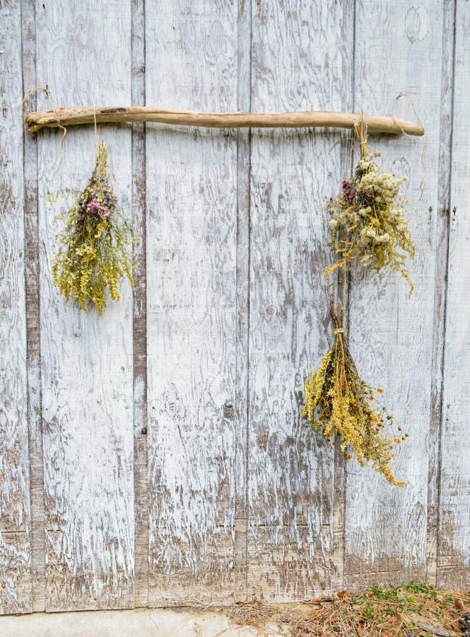 Bukiet kwiaty wiesza na driftwood outside obraz stock