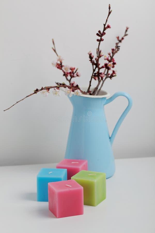 Bukiet kwitnące gałąź i świeczki zdjęcia stock