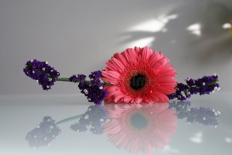 bukiet kwitnie ilustracja wektor fotografia stock