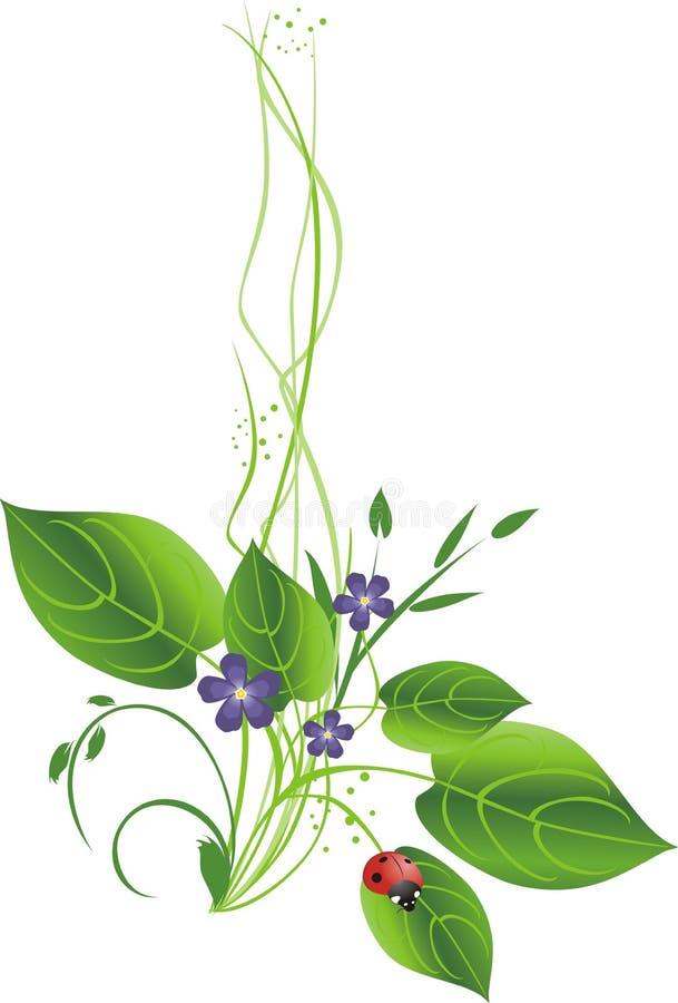 bukiet kwitnie ladybird ilustracja wektor