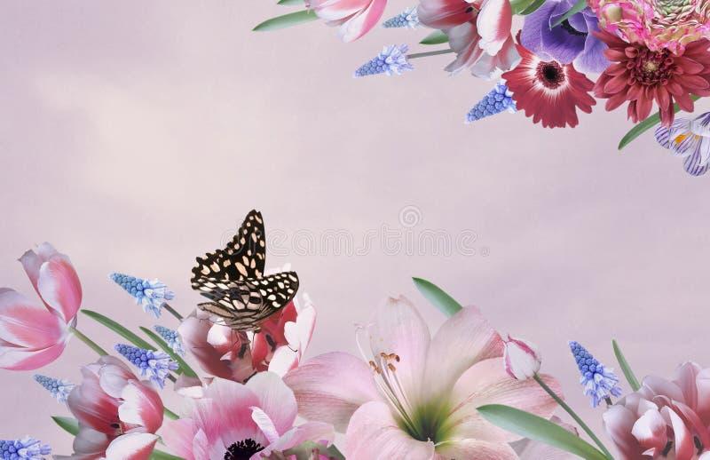 Bukiet piękni ogrodowi kwiaty Powitanie lub wizytówka ilustracja wektor