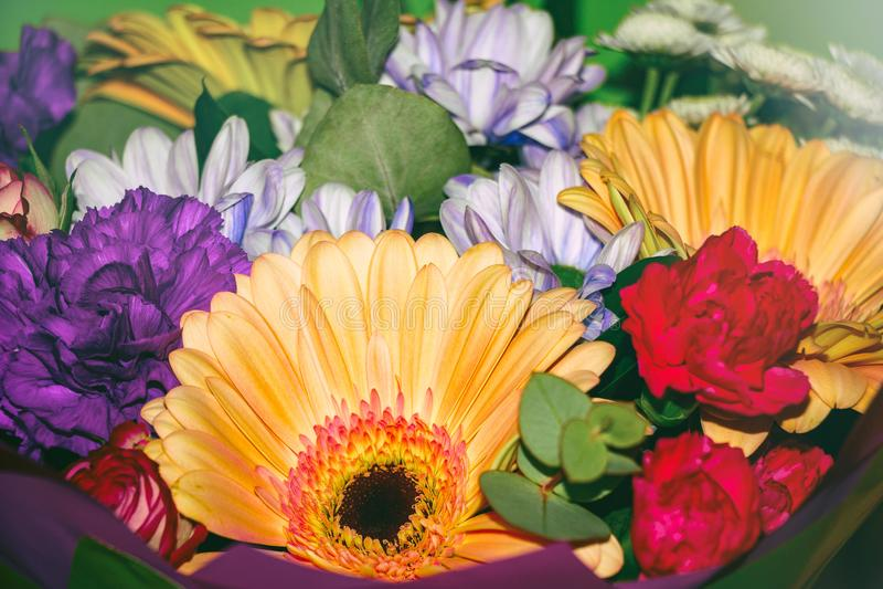 Bukiet piękni asortowani kolory zdjęcie royalty free