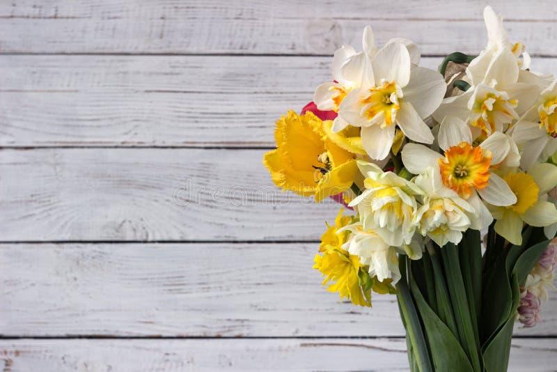 Bukiet pięknych daffodilów różnych typów i tulipanów, tło Kwiaty wiosenne, daffodils terry i żółty zdjęcie royalty free