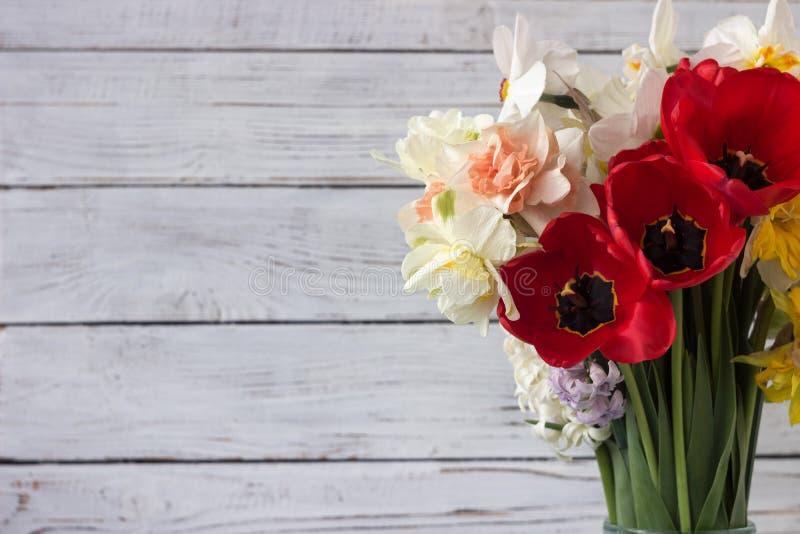 Bukiet pięknych dafodilów różnego rodzaju, czerwonych tulipan i hyacyntów na białym drewnianym tle zdjęcie royalty free