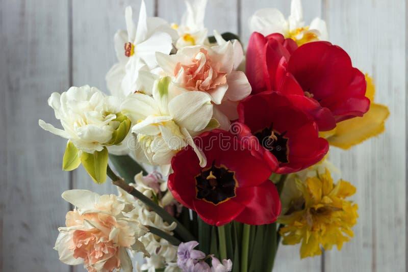 Bukiet pięknych dafodilów różnego rodzaju, czerwonych tulipan i hyacyntów na białym drewnianym tle obrazy stock