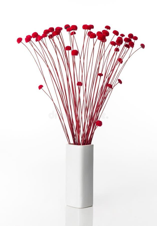 Bukiet prości i piękni czerwoni kwiaty zdjęcie royalty free