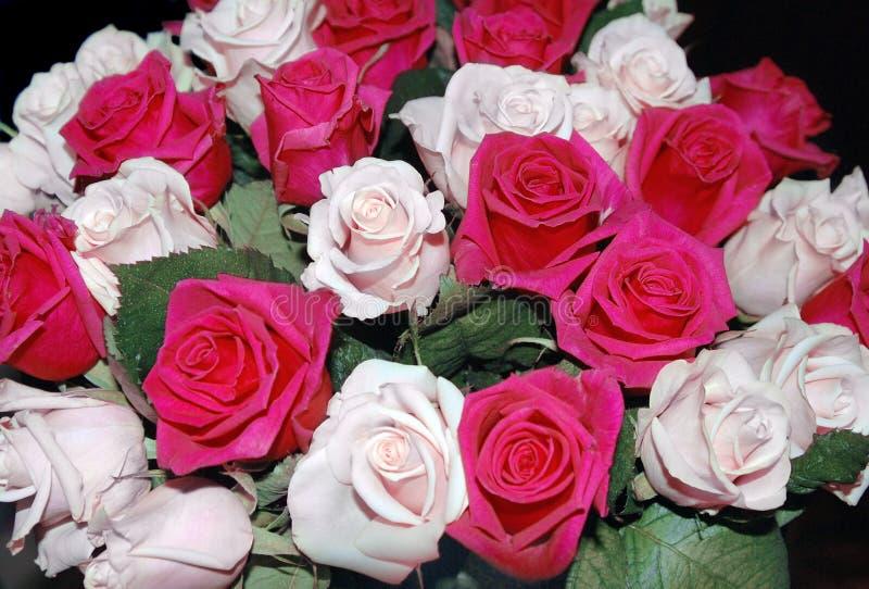Bukiet róże zdjęcie royalty free