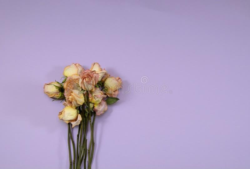 Bukiet różowe róże na bzie zdjęcia royalty free