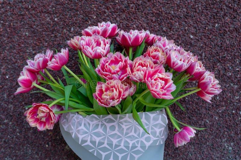 Bukiet różowi czerwoni biel kopii peoni tulipany w szary nowożytny pakować na czerwonym tle szcz??liwe dzie? matki international zdjęcia royalty free