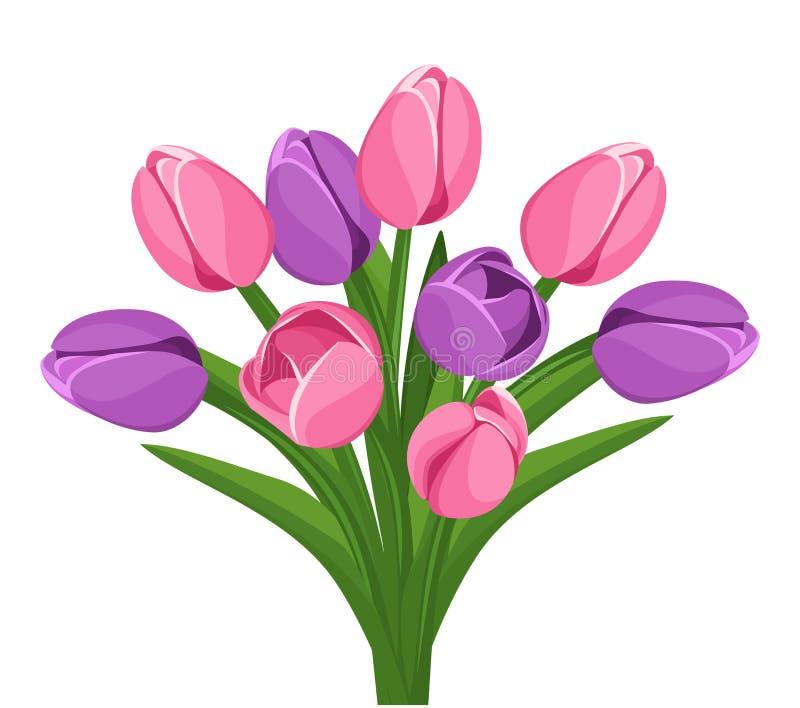 Bukiet różowi i purpurowi tulipany. ilustracji