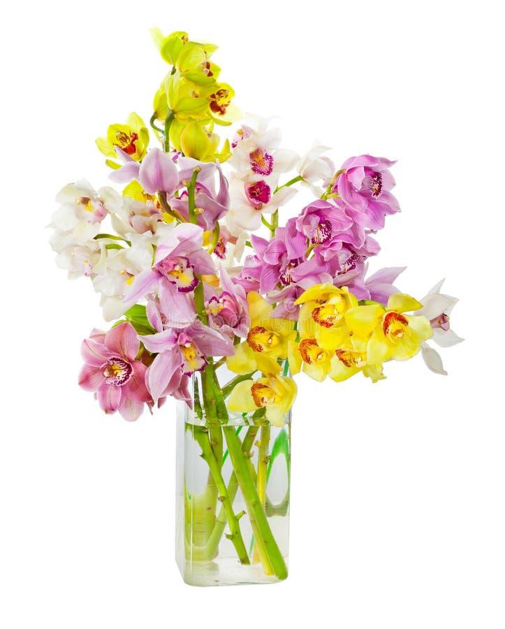 Bukiet storczykowi kwiaty obraz royalty free