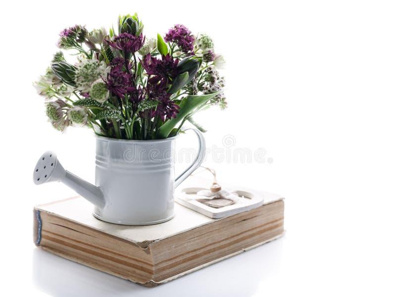 Bukiet wildflowers w białej podlewanie puszce na białym tle Odosobniony przedmiot kosmos kopii fotografia stock