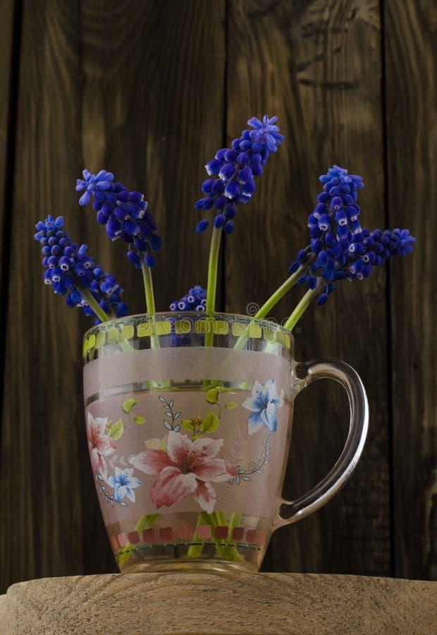 Bukiet wiosna kwitnie w szklanym kubku fotografia stock
