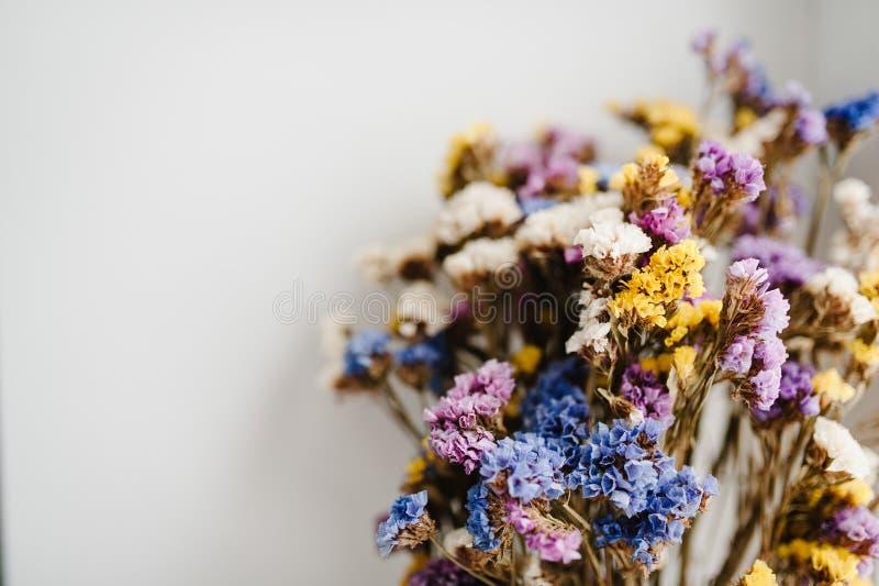 Bukiet wysuszeni, barwioni kwiaty kłama na białym tle stół, Miejsce dla teksta i projekta fotografia stock