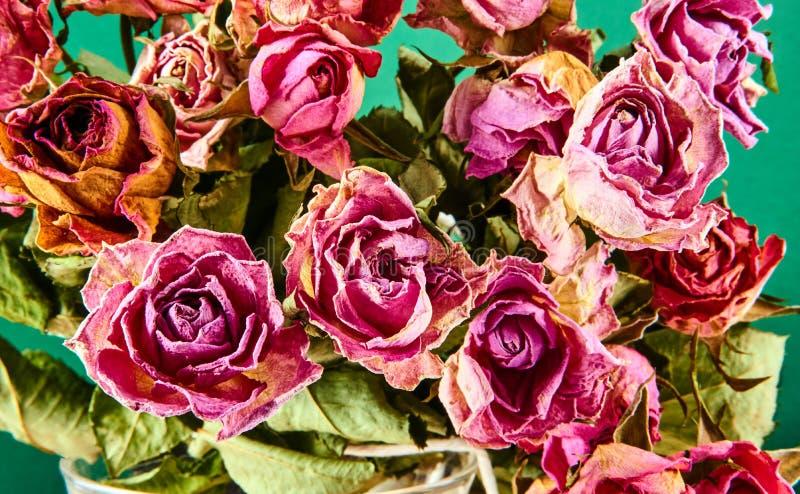 Bukiet wysuszone czerwone róże obrazy stock