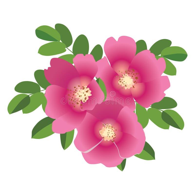 Bukiet z różowym kwiatu psem wzrastał ilustracji