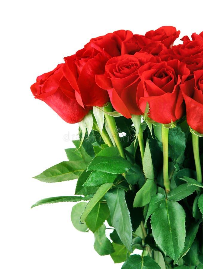 bukieta czerwieni róże obrazy stock