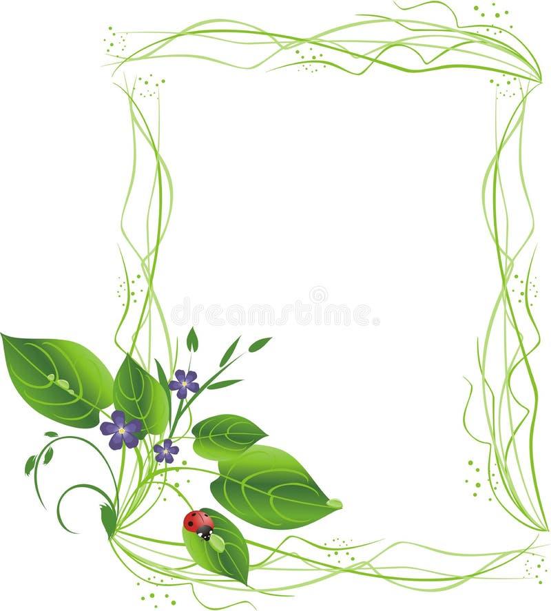bukieta dekoracyjnych kwiatów ramowy ladybird ilustracji
