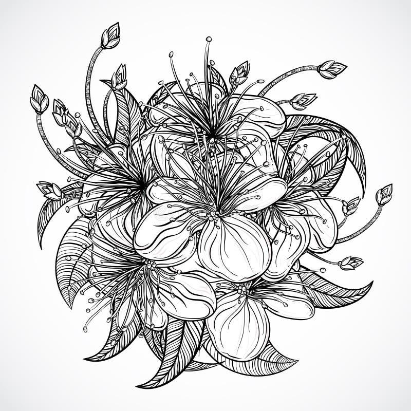 bukieta egzota kwiaty Czarny i biały tropikalni kwiaty i liście elementy Rocznik ręka rysująca wektorowa ilustracja royalty ilustracja