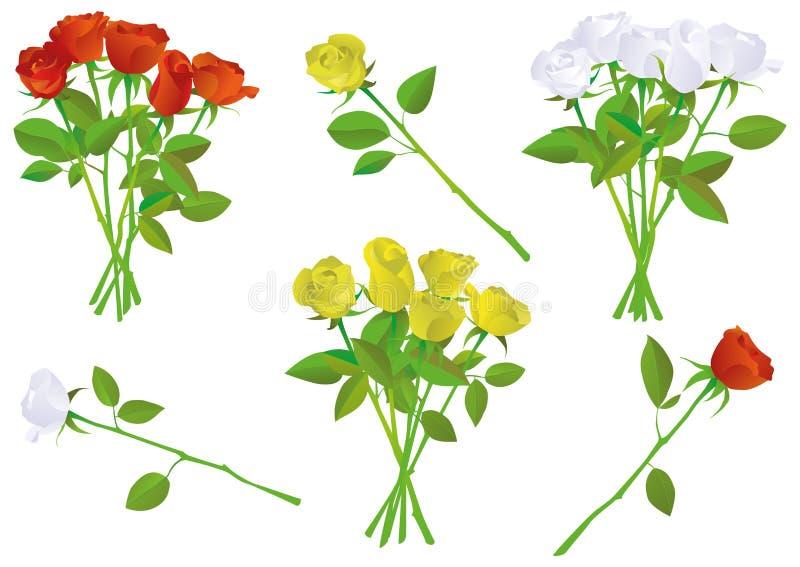 bukieta kolorowej ilustraci różany setu wektor ilustracji