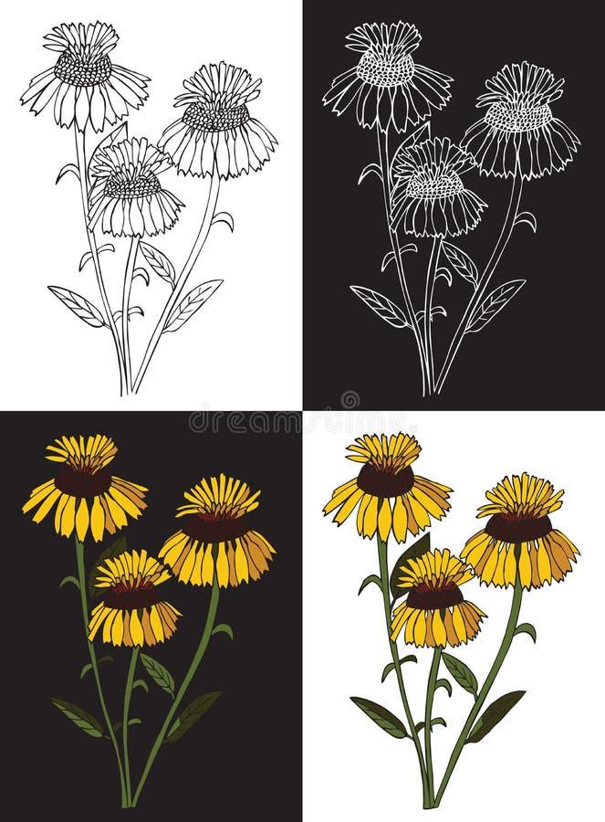 Bukieta koloru żółtego kwiaty ilustracja wektor