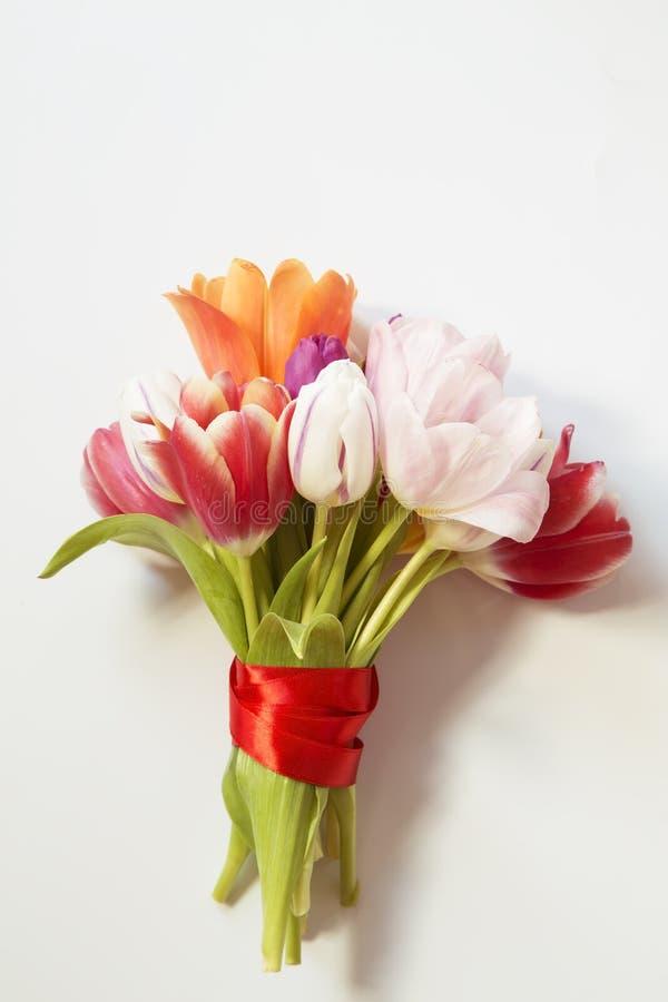 bukieta koloru ilustracja symuluje tulipan?w wektoru wod? zdjęcia royalty free