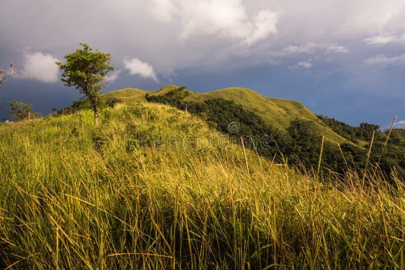 bukit bongol kota belud沙巴惊人的看法  免版税库存照片
