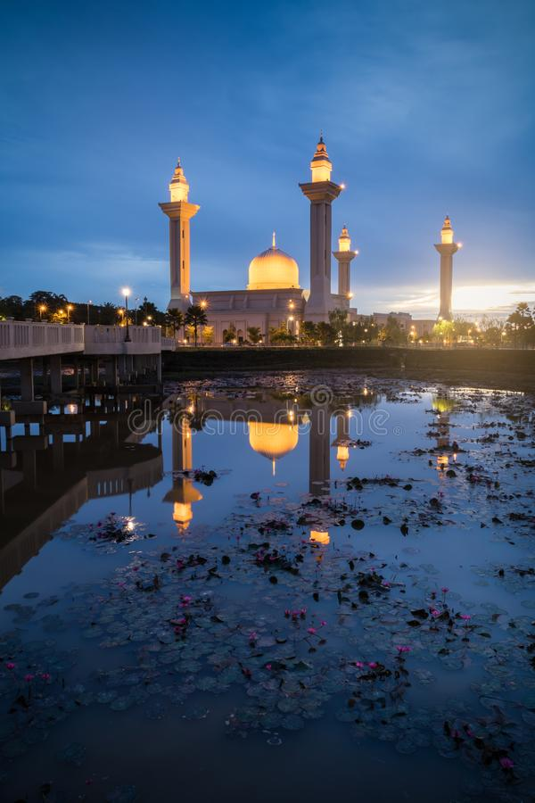 Bukit Jelutong Mosque with lotus in the foreground during blue hour in the morning. royalty free stock photo