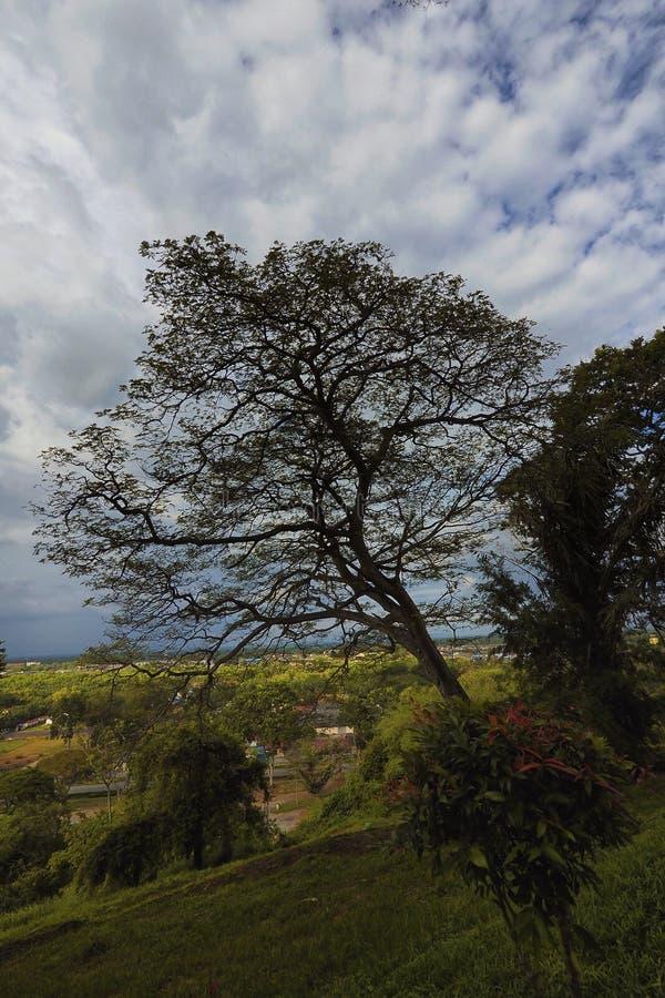 Bukit Melawati sikt arkivbild