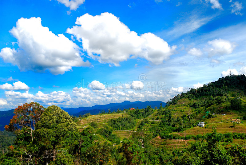 Bukit Tinggi, Malesia fotografia stock