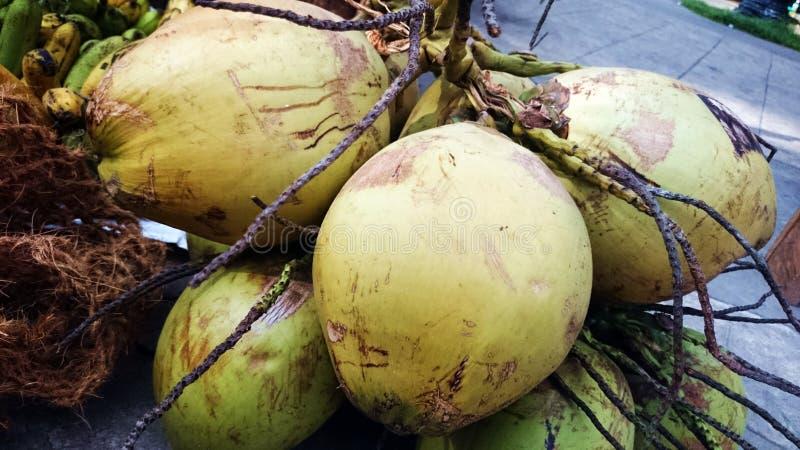 Buko, niyog (kokosnotenfruit) van de Provincie van Filippijnen Quezon stock afbeeldingen