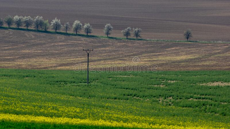 Bukovany and surrounding landscape in spring.  stock photos
