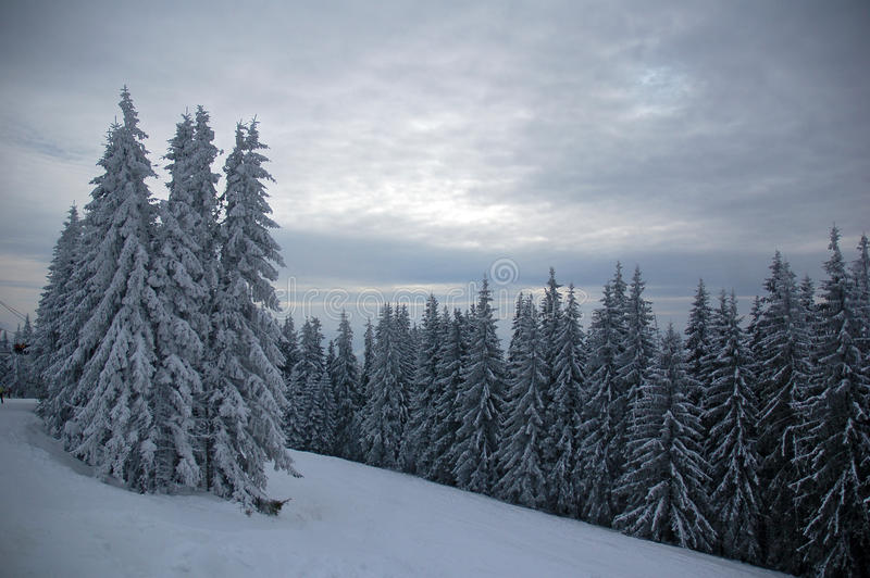 Bukovel ski resort 2 royalty free stock image
