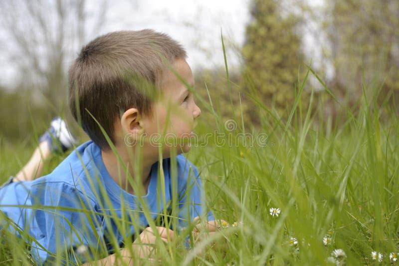 bukpojkegräs hans little som ligger arkivbild