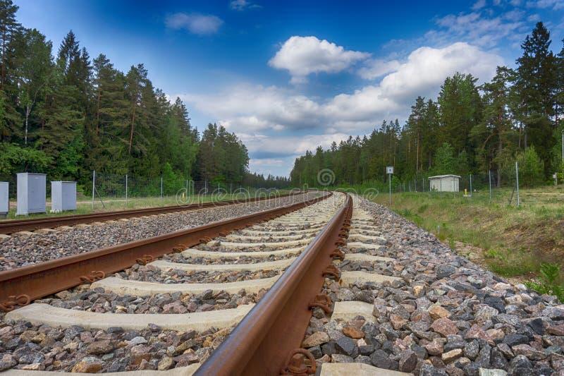 Bukta järnvägspåret till och med skogen arkivfoto